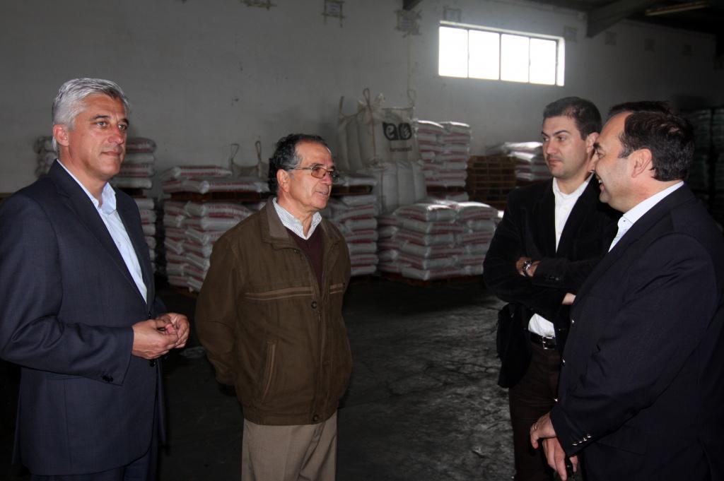 Duarte Freitas defende apoio europeu para setor dos lacticínios