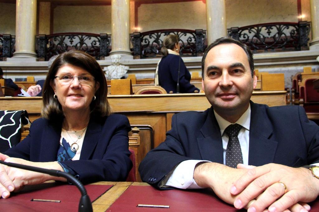 Deputados do PSD querem soluções para a crise do setor do leite nos Açores