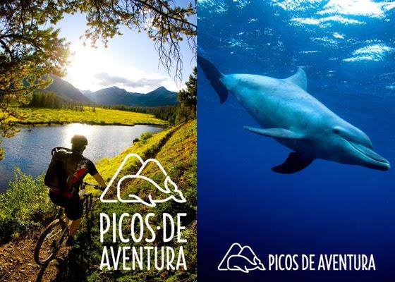 Picos de Aventura inicia operações na ilha Terceira