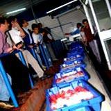 Rendimentos da pesca com ligeira subida nos dois primeiros meses de 2005